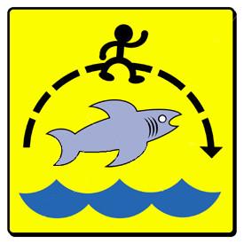 jump_the_shark1